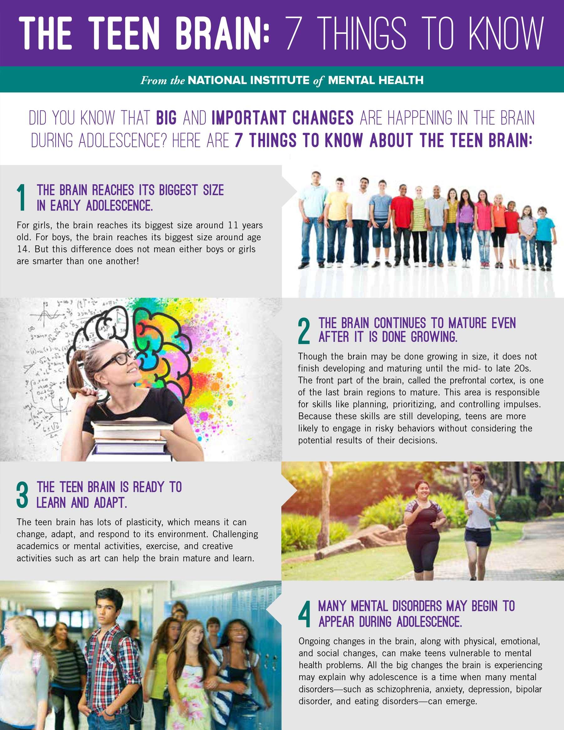 teen_brain